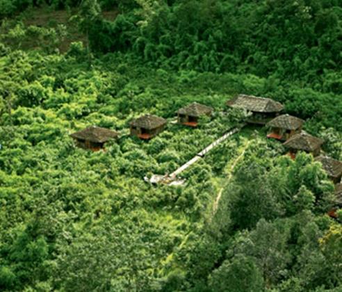 PhotoFly Travel Club | Cambodia Jungle | PhotoFly Travel Club