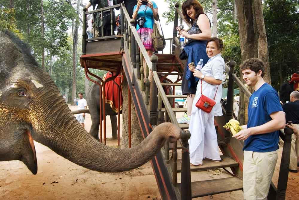 PhotoFly Travel Club | Feeding Elephants | PhotoFly Travel Club