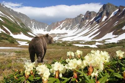 PhotoFly Travel Club   Russian Mountains   PhotoFly Travel Club