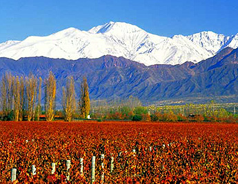 PhotoFly Travel Club | mendoza | PhotoFly Travel Club
