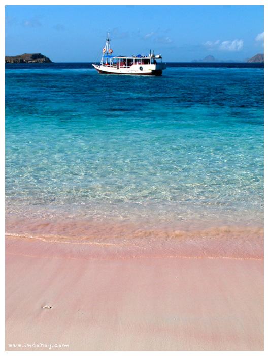 Pink Beach Tours