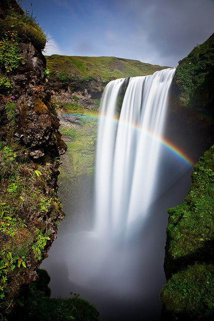 PhotoFly Travel Club   skog rainbow vert   PhotoFly Travel Club