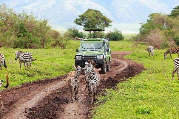 visit kenya group tours