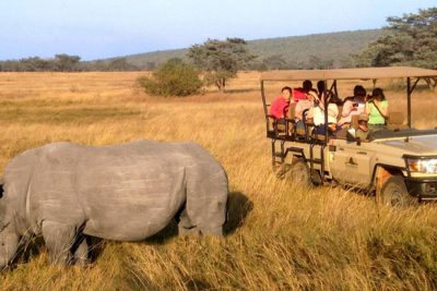 South Africa safari group tours