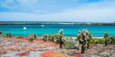 PhotoFly Travel Club | South-Plaza-Island | PhotoFly Travel Club