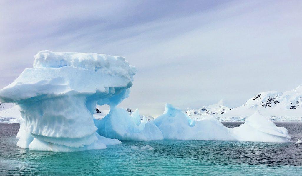 Antarctic Group Tours