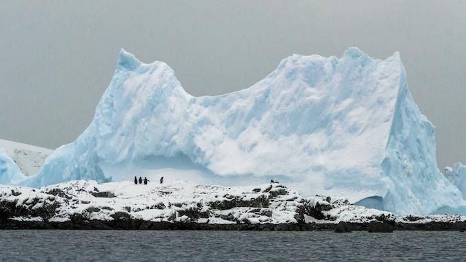 PhotoFly Travel Club | Antarctica Group Tours | PhotoFly Travel Club