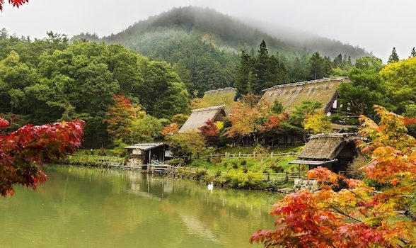 PhotoFly Travel Club | Japan Group Tours | PhotoFly Travel Club