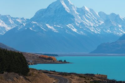 new zealand group tour