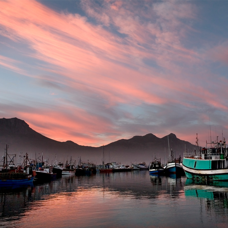 PhotoFly Travel Club   Hout_bay_harbour   PhotoFly Travel Club