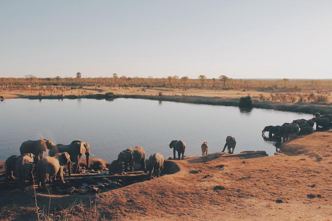 zimbabwe group tour