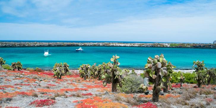 PhotoFly Travel Club | best galapagos islands | PhotoFly Travel Club
