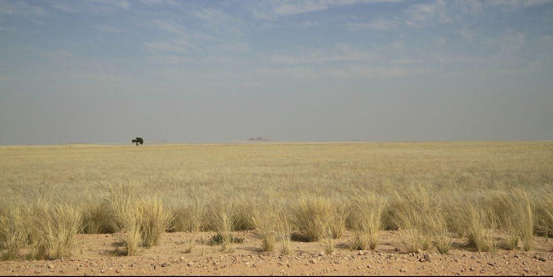 PhotoFly Travel Club | Kalahari Desert group tour | PhotoFly Travel Club