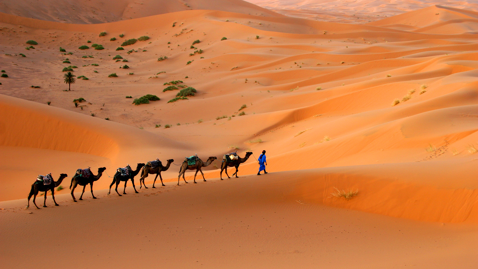 PhotoFly Travel Club | morocco group tour | PhotoFly Travel Club